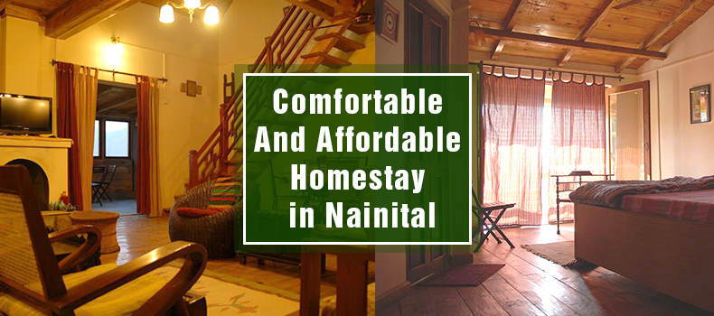 Emerald Trail - Nainital Homestay with affordable price.